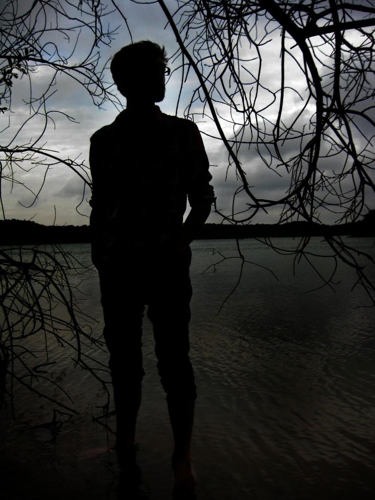 Silhouette of Musician Copyright Heather Dalton 2012