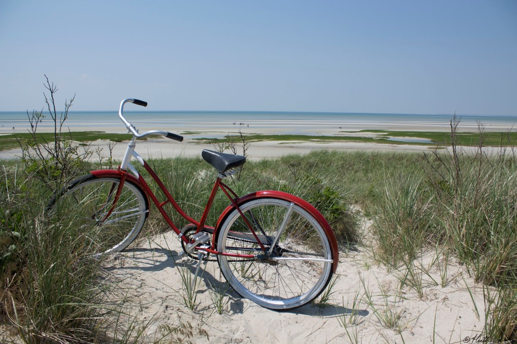Photograph of bike skaket Beach