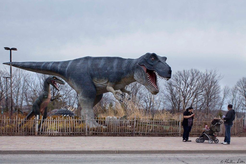 Dinosaur Park Tourism Heather Dalton