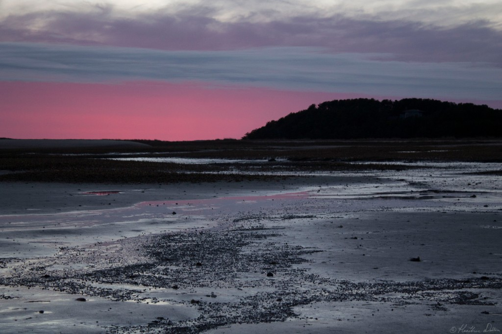 photograph sunset Wellfleet Flats